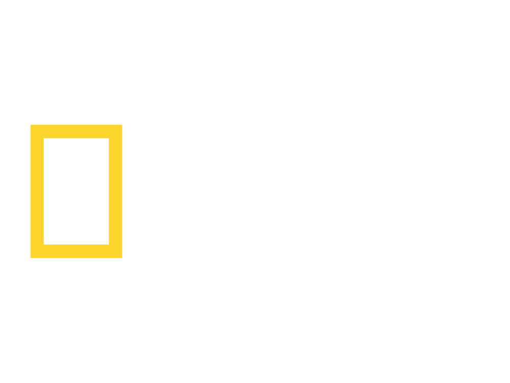 Jason Bittel<br><small>National Geographic</small>